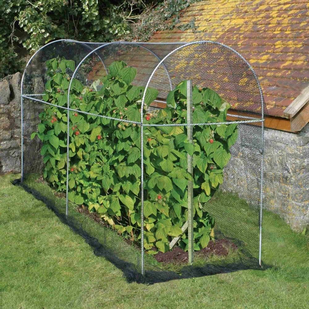 Agriframes Long Domed Roof Fruit Cage Garden Street