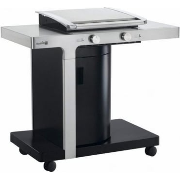 THIN 2 Burner Gas BBQ