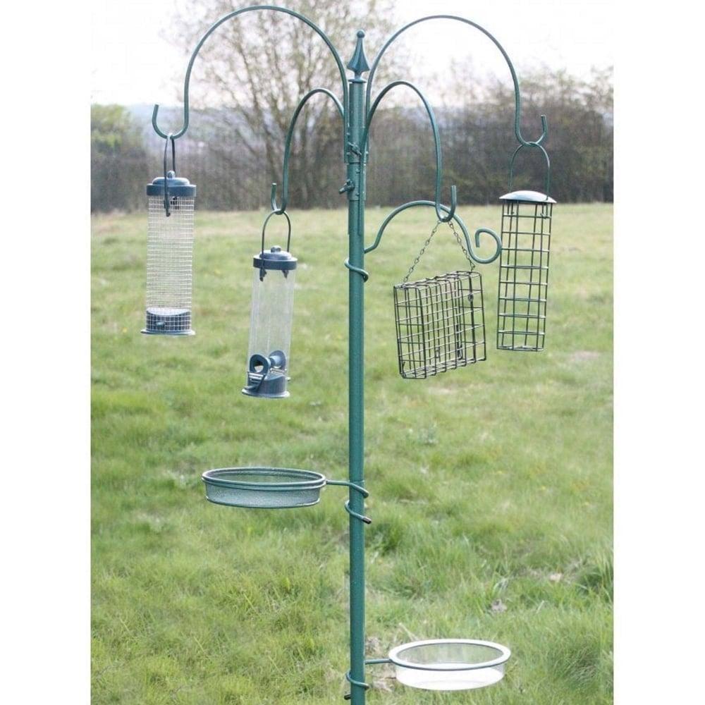 Bird Feeding Stations Wild Bird Eating In Feeding Station