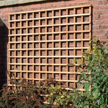 Heavy Duty Square Trellis - Golden Brown