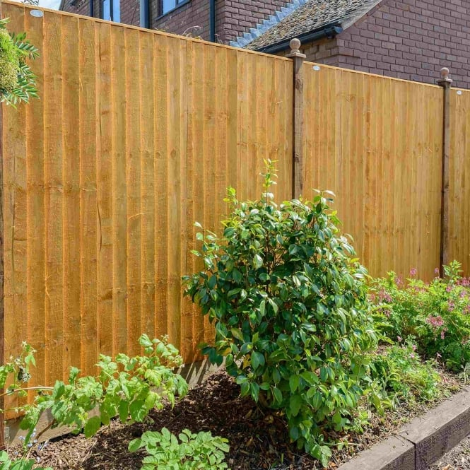 Grange Standard Feather Edge Fence Panel