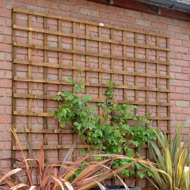 Grange Weston Heavy Duty Square Trellis - Dark Brown