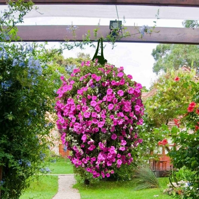 Greena Long Hanging Planter Bags - Pack Of Two