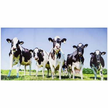 Inquisitive Cows Outdoor Canvas