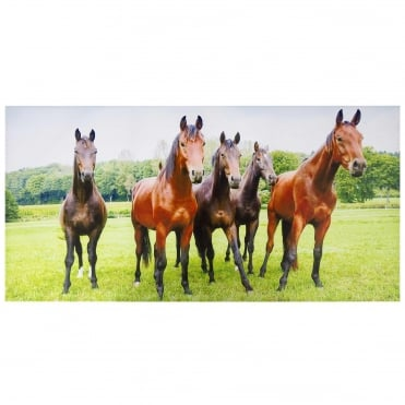 Interested Horses Outdoor Canvas