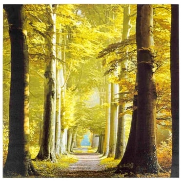 Woodland Path Outdoor Canvas