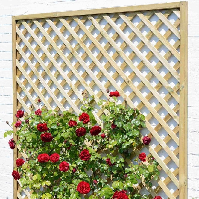 Grange Madeley Lattice Trellis