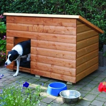 Large Pent Dog Kennel