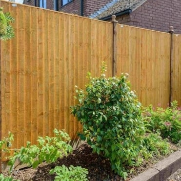 Standard Feather Edge Fence Panel