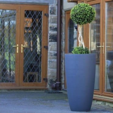Duo Buxus Ball With Grey Vase Planter