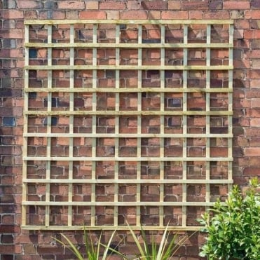 Traditional Square Trellis