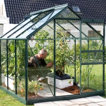 Venus Green Framed Greenhouse 6X6