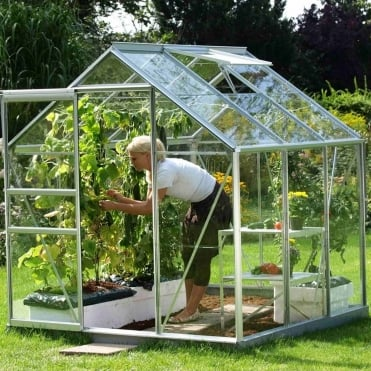 Venus Silver Framed Greenhouse 6X6