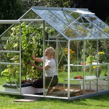 Venus Silver Framed Greenhouse 6X8