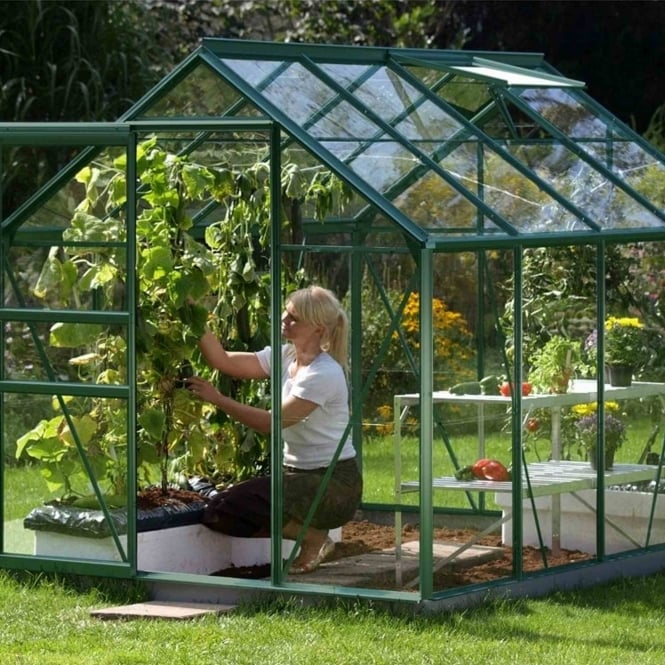 Vitavia Venus Green Framed Greenhouse 6X8