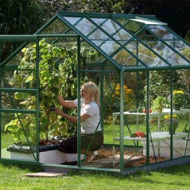 Venus Green Framed Greenhouse 6X8