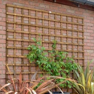 Weston Heavy Duty Square Trellis - Dark Brown