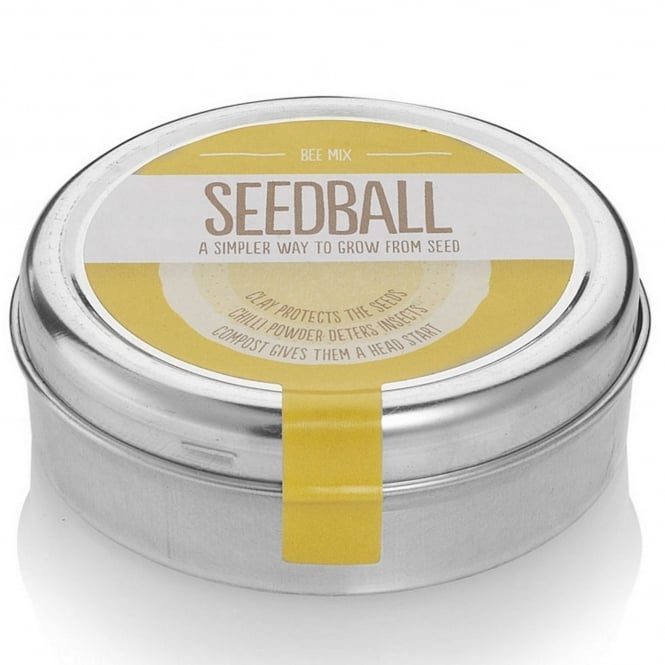Seedball Wildflower Bee Mix Seeds